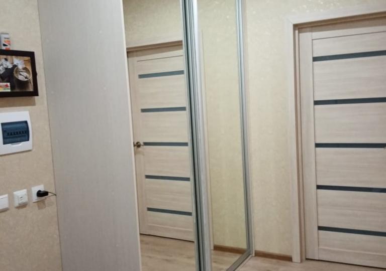Шкаф-купе в прихожую двери с зеркалом